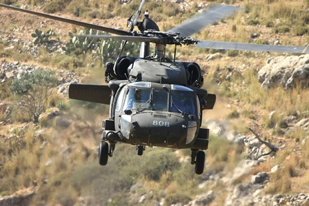 A UH-60L Yanshuf helicopter of the Israeli Air Force by Ofer Zidon/Stocktrek Images art print
