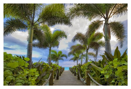 Paradise Path by Dennis Frates art print