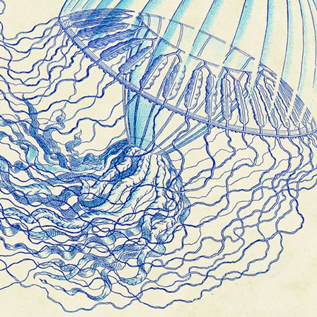 Vintage Jellyfish I by Sparx Studio art print