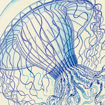 Vintage Jellyfish II by Sparx Studio art print