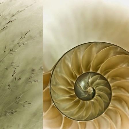 Kaleidoscope Of Memories II by Sidney Aver art print