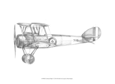 Technical Flight V by Ethan Harper art print