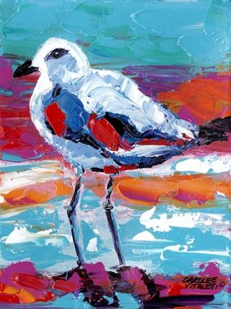 Seaside Birds I by Carolee Vitaletti art print