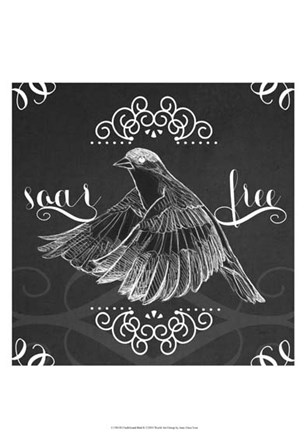 Chalkboard Bird II by June Erica Vess art print