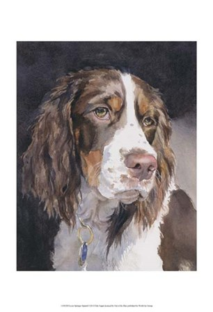 Lizzie Springer Spaniel by Edie Fagan art print