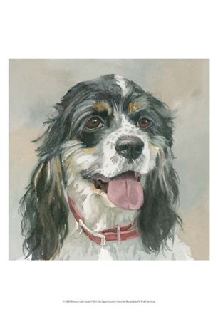 Winston Cocker Spaniel by Edie Fagan art print