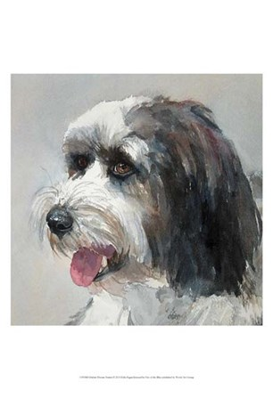 Harlan Tibetan Terrier by Edie Fagan art print