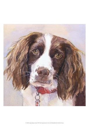 Georgia Springer Spaniel by Edie Fagan art print