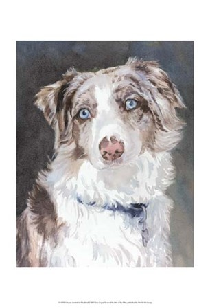 Bogan Australian Shepherd by Edie Fagan art print