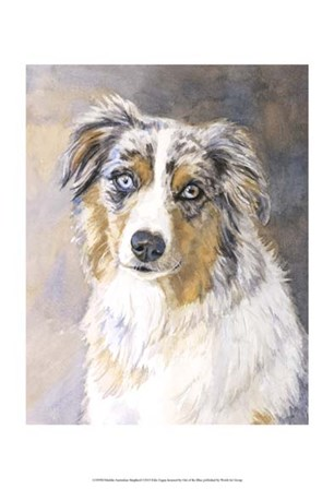 Maddie Australian Shepherd by Edie Fagan art print