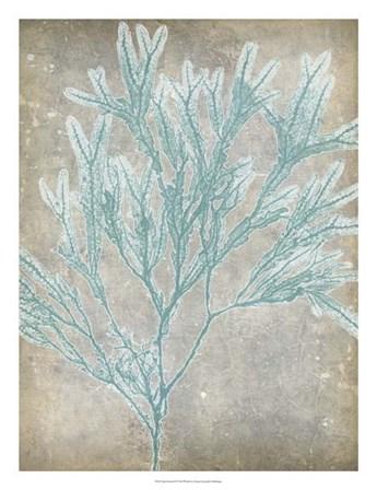 Spa Seaweed I by Jennifer Goldberger art print
