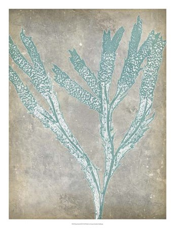 Spa Seaweed II by Jennifer Goldberger art print