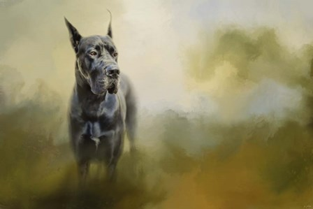 Wistful Dane by Jai Johnson art print